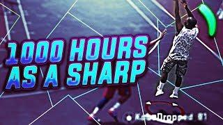what 1000 hours of sharp experience looks like nba 2k18