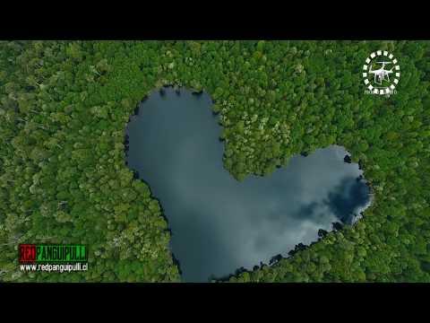 Una laguna con forma de Corazon en Liquiñe
