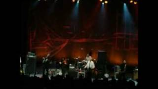 Flogging Molly - The Wrong Company & The Story So Far