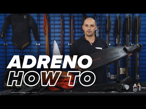 Spearfishing Gear You Need To Get Started | ADRENO