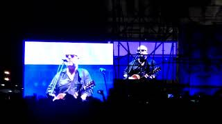 pixies en el zocalo ( here comes your man)