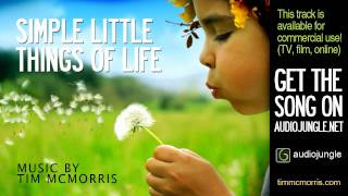 Simple Little Things Of Life - Tim McMorris