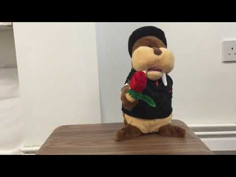 Valentine singing toy - Tom the Walrus sings CeeLo Green