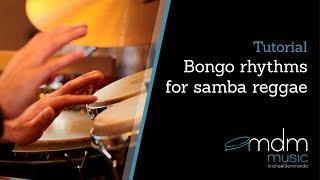 Bongo rhythms for samba reggae Free lesson by Michael de Miranda