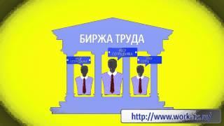 cursuri video de tranzacționare a opțiunilor)