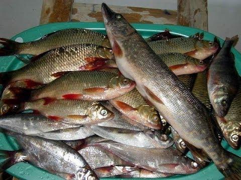 Секреты рыбалки ловля щуки весной на реке спининнг - YouTube