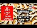 7 Интересных Фактов о Турецком Языке