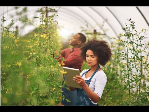 Lesson 3 : Investing In Agriculture