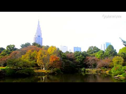 Shinjuku Gyoen National Garden , Tokyo | One Minute Japan Travel Guide