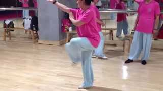 Tai Chi Master Cui Zhong San Disciple Performing ChangQuan