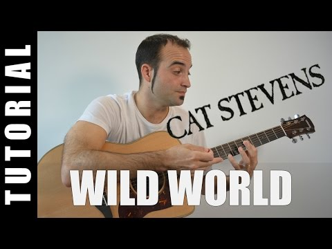 How to play Wild World - Cat Stevens EASY Tutorial CHORDS and LYRICS, TABS