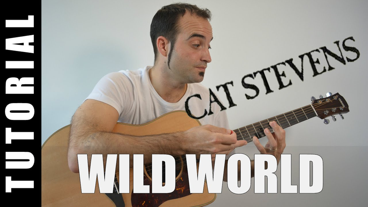 Como Tocar Wild World Cat Stevens Acordes Tutorial Guitarra