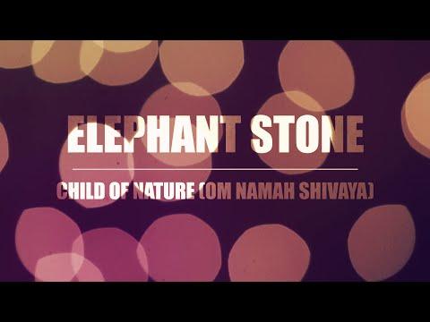 Elephant Stone - Child of Nature (Om Namah Shivaya)   Live NPR World Cafe Session