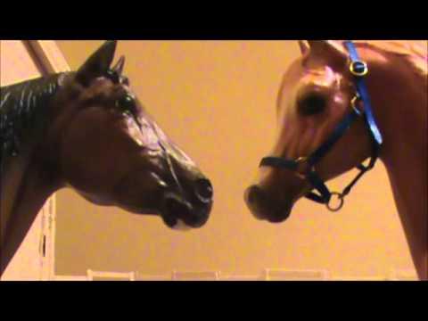 'Love at First Sight' - Part 5 (Breyer horse movie)