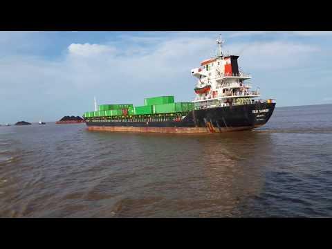 MV. TELUK FLAMINGGO Berlayar di lautan dan deretan kapal tug boat.