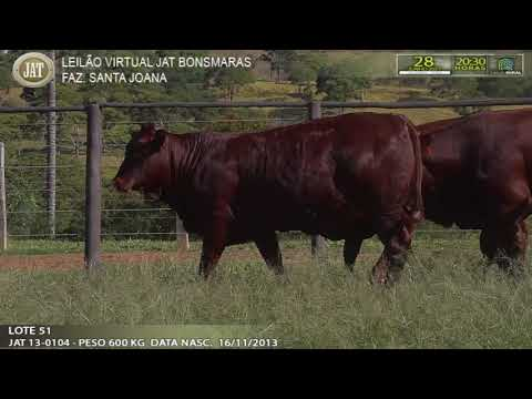 LOTE 051