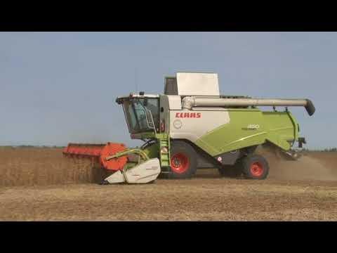 Сельское хозяйство в Марксовском районе 2020