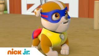Щенячий патруль | Супер щенок | Nick Jr. Россия