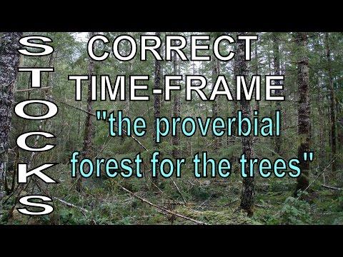 Mentorship; Correct Time Frame Consideration