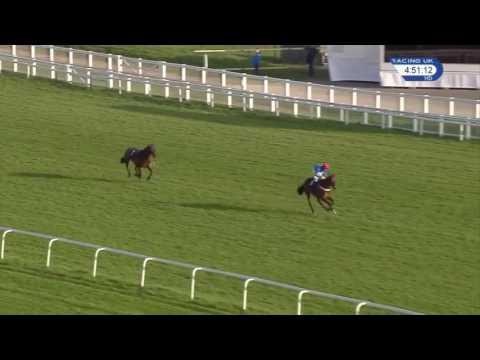 Jockey Mistakes Winning Post and Loses Race