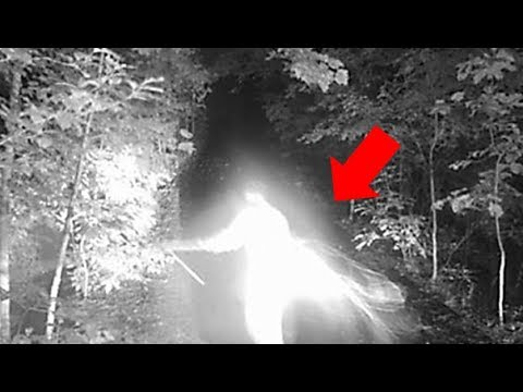 What Did This Person Capture On A Trail Camera?