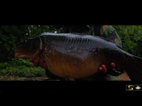 Carp Fishing: Rob Hughes' Understanding Underwater 1 - Teaser