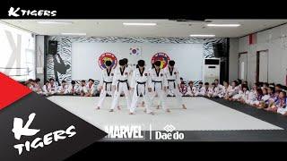 [BTS_Fake love remix] Taekwon Dance ver.