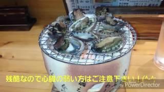 白浜温泉紀行♨名物とこぶし踊り焼き、三段壁、パワースポット歓喜神社♥