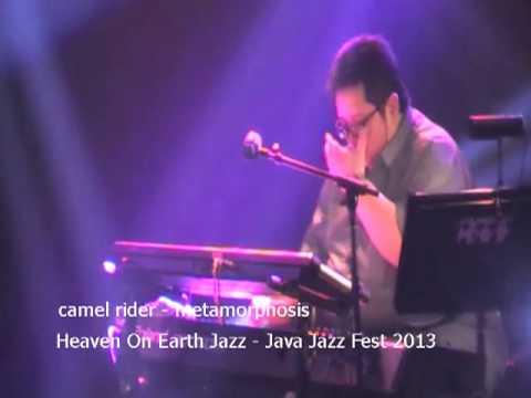 camel rider - metamorphosis - java jazz 2013