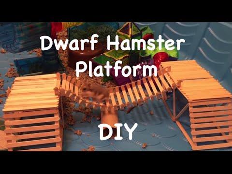 Bin cage platform tutorial doovi for Hamster bin cage tutorial