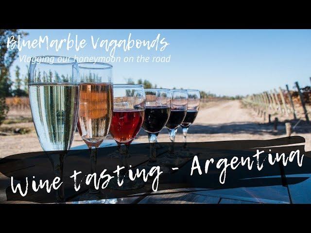 Wine tasting - Argentina | #VANlife | Vlog#9