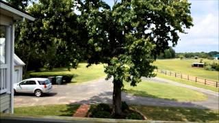 The Historic Dowd Farm in Virginia