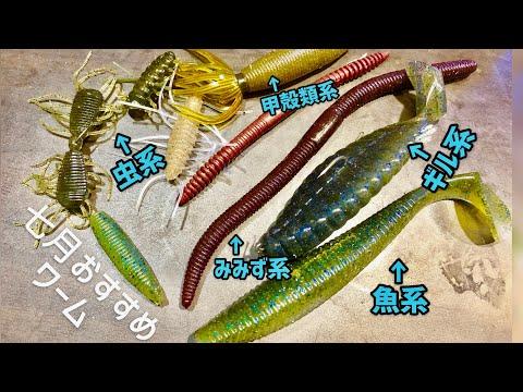 バス釣りオカッパリこれだけ持っていけば釣れる夏のおすすめワーム