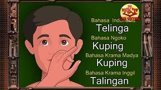 Bahasa Jawa-Belajar Mengenal Anggota Tubuh