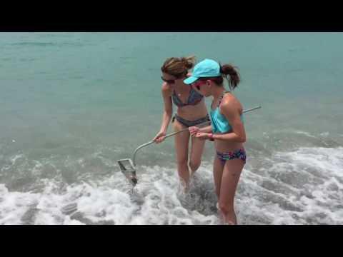 Tips For Shark Teeth Hunting On Venice Beach