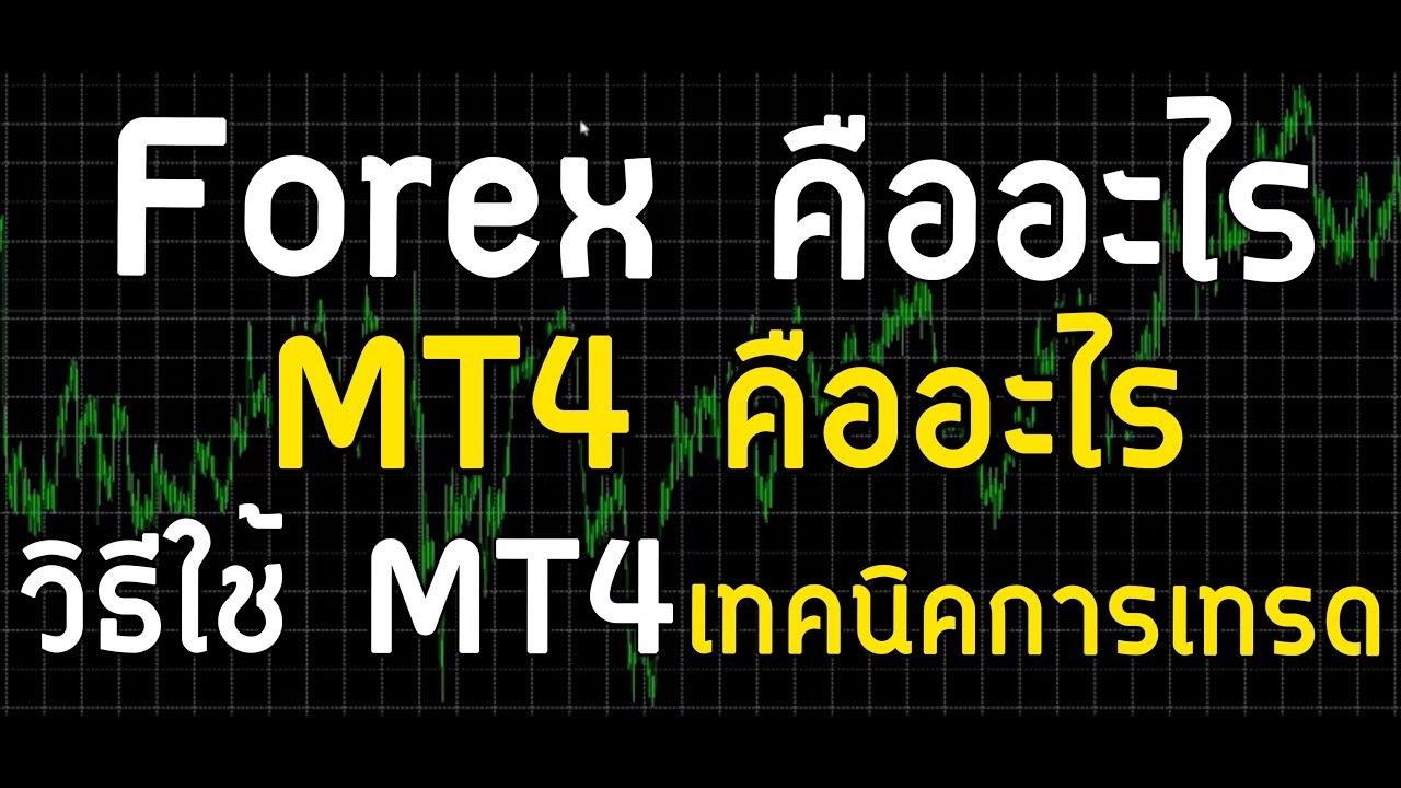 Forex คืออะไร MT4 คืออะไร วิธีใช้ MT4 เทคนิคการเทรด Forex 2019