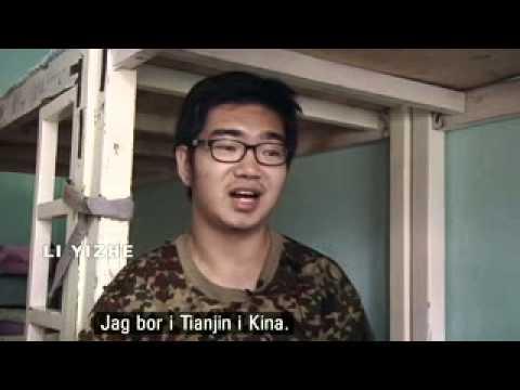 SVT Korrespondenterna. Den Digitala Drogen. 2013