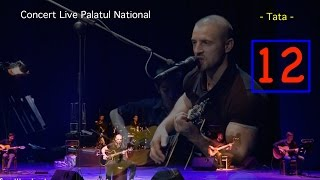 Pavel Stratan - Tata - (Palatul National - concert live)
