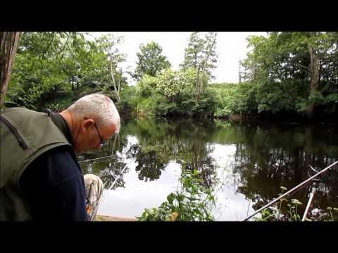 River Tees Fishing