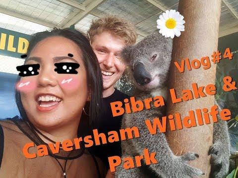 DD Vlog#4 - Bibra Lake & Caversham Wildlife Park, Perth Western Australia