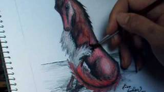 Speed Drawing - Fox Vixen
