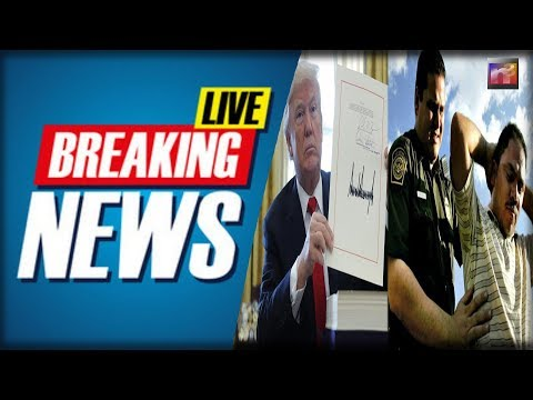 BREAKING: Trump Just Give The ORDER and STRUCK FEAR into Every Illegal plotting to Invade America