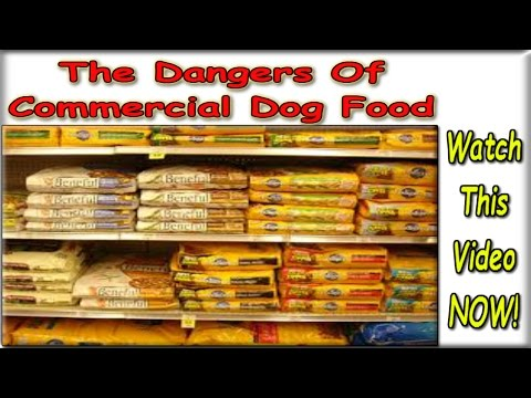 ☼☼☼ Best Homemade Dog Food Recipes ♥ FREE COURSE ♥ Dog Diet And Nutrition :)))