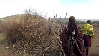 アフリカのケニア・タンザニアに住むマサイ族の村に潜入.