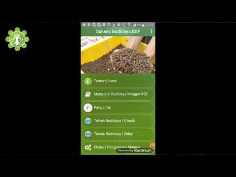 Aplikasi Budidaya Maggot BSF