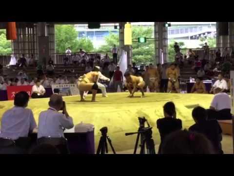 2015 第20回 世界相撲選手権大会...