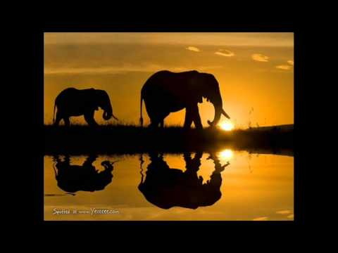 Hans Zimmer - The Journey - Kopano