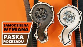Nissan Terrano WD21 2019 instrukcja obsługi po polsku online