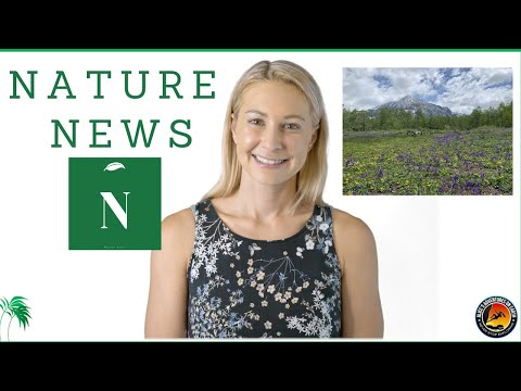 Nature News:  Science, Climate & The Environment - August 7 2020