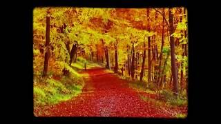 سنفونية الخريف - شوبان -Chopin - Mariage D'amour